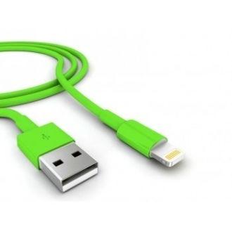 Câble USB iPhone 6+ Vert